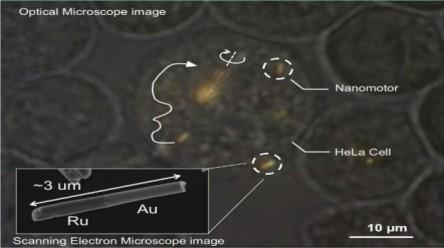 21_fev_-_02_-_nanomotores_-_01