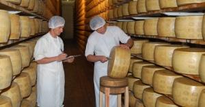 durante-o-processo-de-producao-do-grana-padano-o-queijo-e-virado-e-escovado-a-cada-15-dias-e-a-cada-90-dias-e-inspecionado-com-um-martelinho-para-identificar-a-qualidade-do-produto-o-queijo-1375887029836_956x500