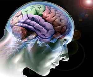 cerebro-0101