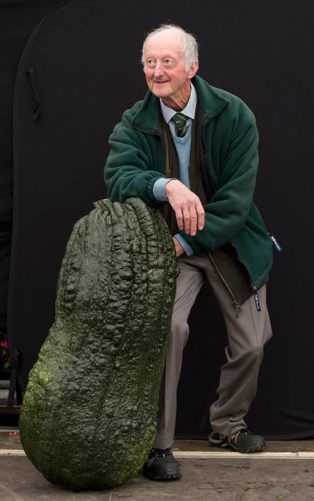 legume-gigante5