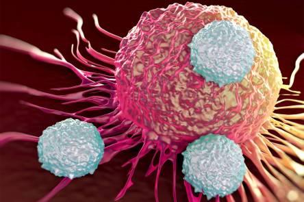saude-ataque-celulas-cancerigenas